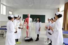中医传统康复实训